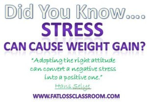 Stress and Weight Gain - Could Stress Be Stopping Your Weight Loss Efforts?